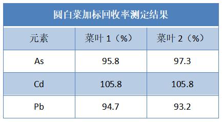圆白菜加标回收率测定结果