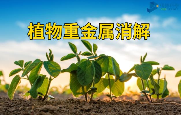 植物重金属消解