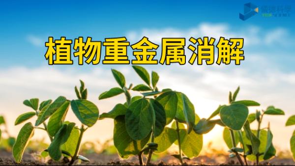 植物重金属消解分析——智能石墨消解仪