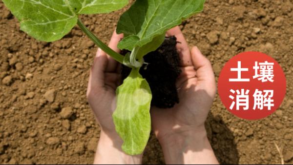 消解电热板应用于土壤重金属检测预处理的步骤操作