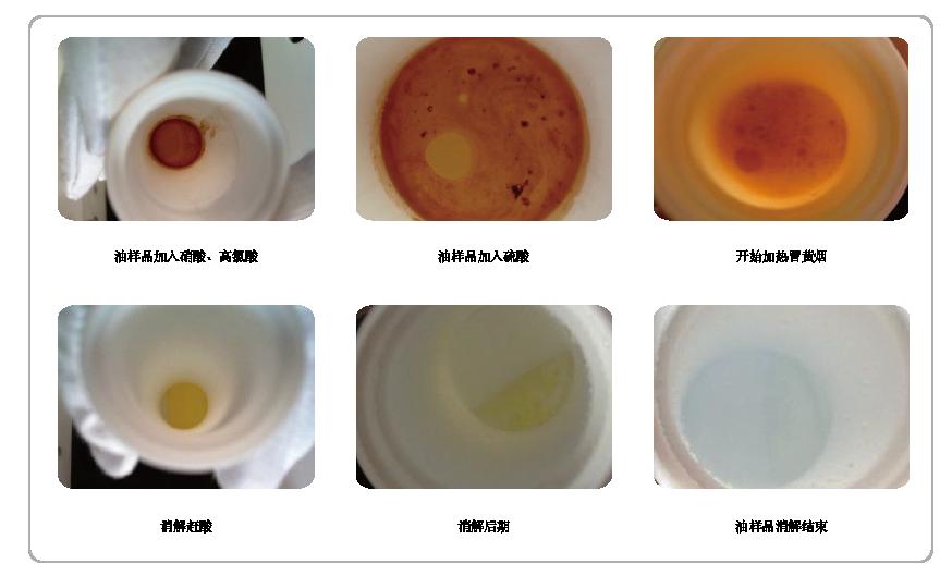 消解过程鱼肝油变化