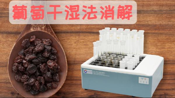 葡萄干硝酸湿法消解——智能石墨消解仪