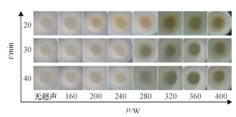 图5不同密闭消解时间、不同超声功率的消解效果