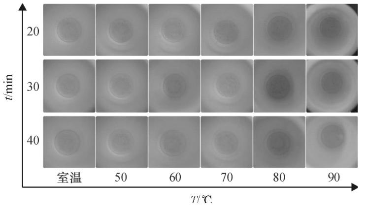 图6不同密闭消解时间、不同水浴温度的消解效果