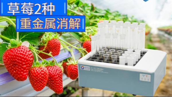 石墨消解仪实验分析丨草莓有哪些重金属需要注意
