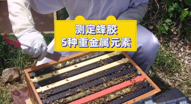 测定蜂胶中的5种重金属元素